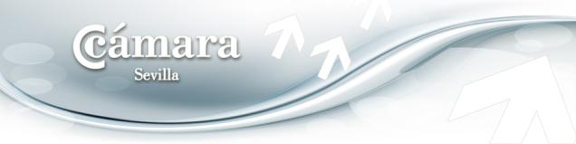 cabecera_2011azul